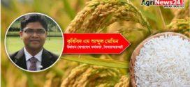 রাইস ইজ দ্যা রাইজ অব বাংলাদেশ