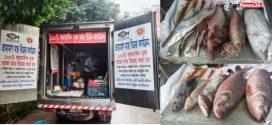 রাজধানীর যে ১৬টি স্থানে পাবেন ফরমালিন মুক্ত সামুদ্রিক ও মিঠা পানির সতেজ মাছ
