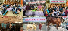 মোহাম্মদপুরে জিএমই রেঞ্চ -এর নতুন ডিসপ্লে সেন্টার উদ্বোধন