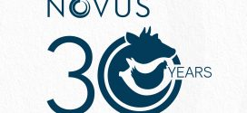 Novus celebrates anniversary this month, planning for a long future