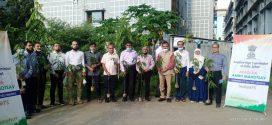 সিকৃবিতে ভারতীয় হাই কমিশনের বৃক্ষরোপণ