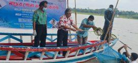 বাকৃবিতে জাতীয় মৎস্য সপ্তাহ উপলক্ষ্যে নদীতে মাছের পোনা অবমুক্তি